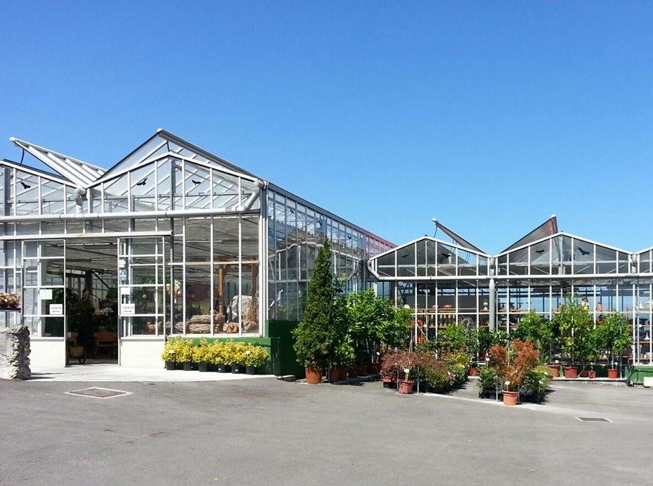 Floristeria ostende floristeria flores y plantas for Jardineria cantabria